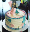 attachment-https://cakewithus.com/wp-content/uploads/2021/04/cant-wait-to-see-her-him-2.5-kg-375-aed-100x107.jpg